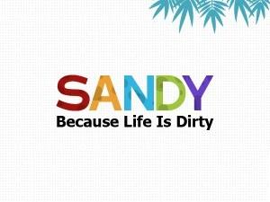 Sandy-wipes-300x250[1]