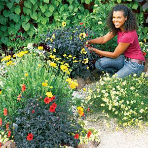 gardening[1]