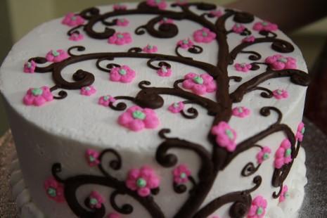 cake-552285_1280-e1427729966478[1]