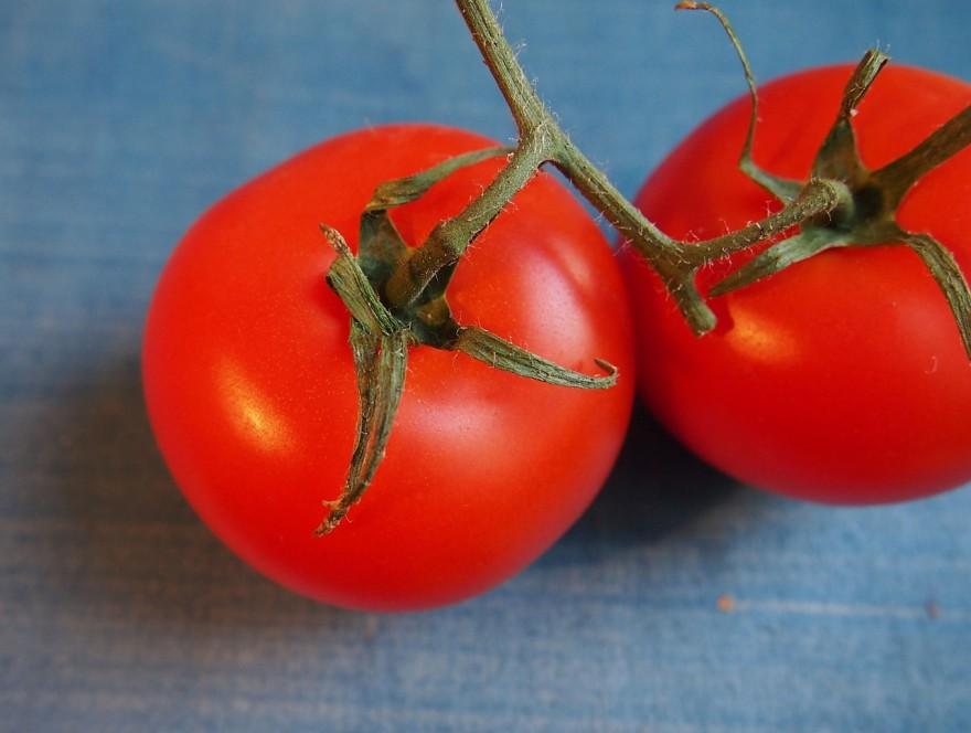 tomato-681149_1280