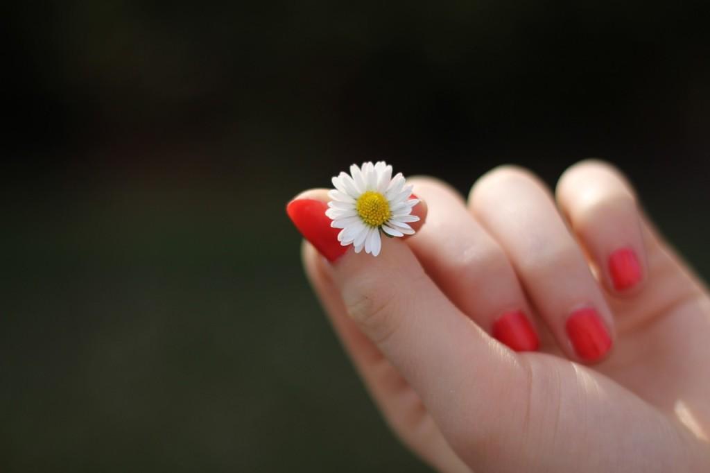 Free Nail Polish Samples -CatchyFreebies