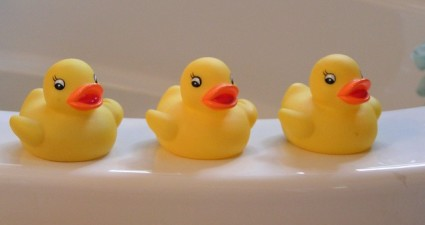 rubber-duckies-14614_640