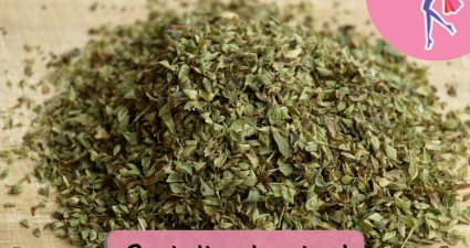 Catchy freebie template oregano