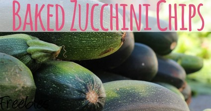 baked zucchini chips recipe catchyfreebies
