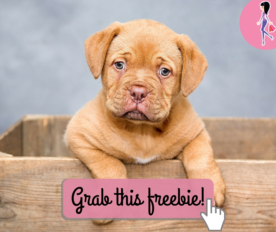 Now Fresh Puppy Food Reviews