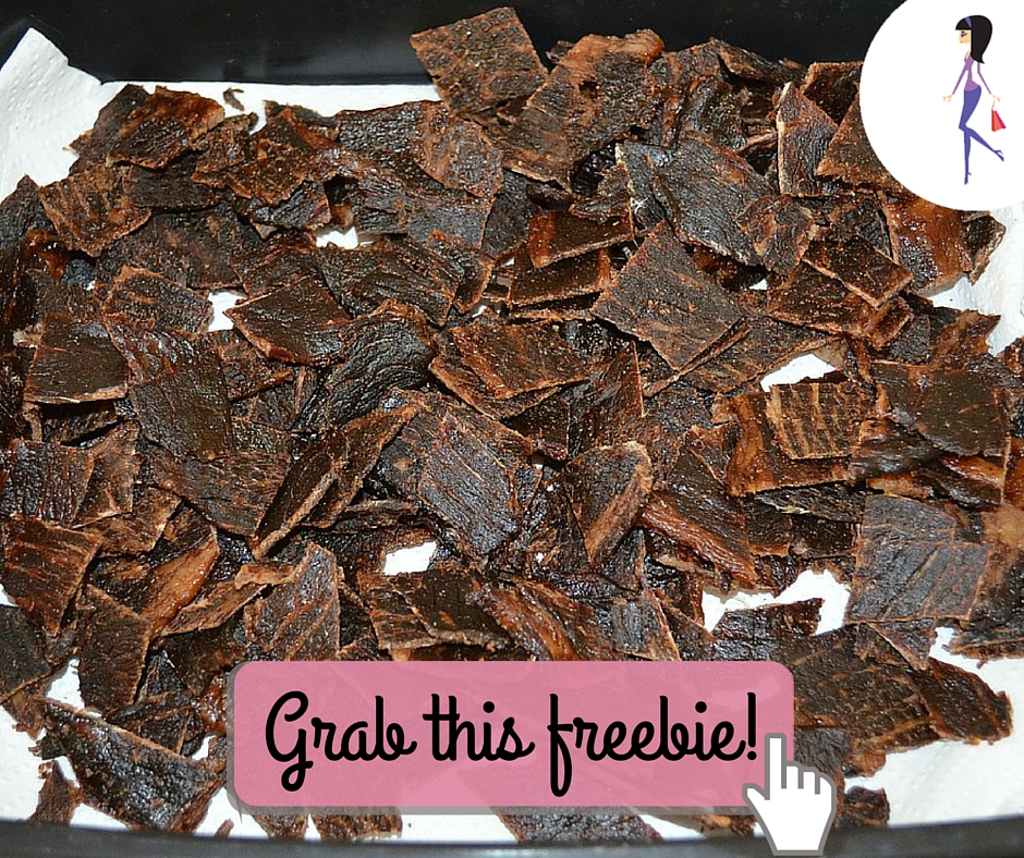 CatchyFreebies sample jerky
