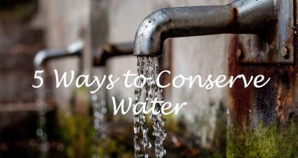 conservewatercatchyfreebies