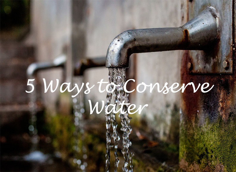 5 Ways to Conserve Water