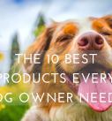 The 10 Best Products Every Dog Owner Needs