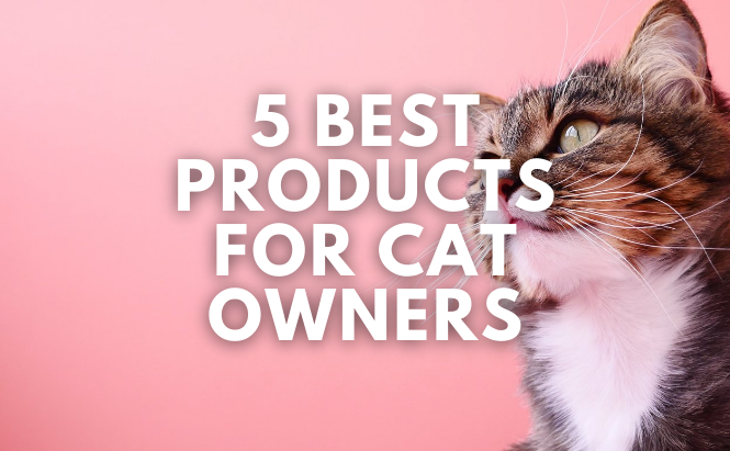 5 Best Products for Cat Owners